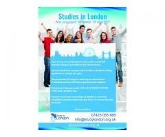 Studia w Anglii
